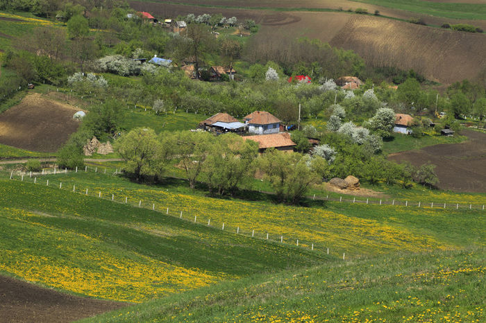 Village between hills Village Houses Transylvania Nature_collection Travel Destinations Environment Beauty In Nature Agriculture House Field Landscape High Angle View Rural Scene Outdoors Architecture Nature Grass