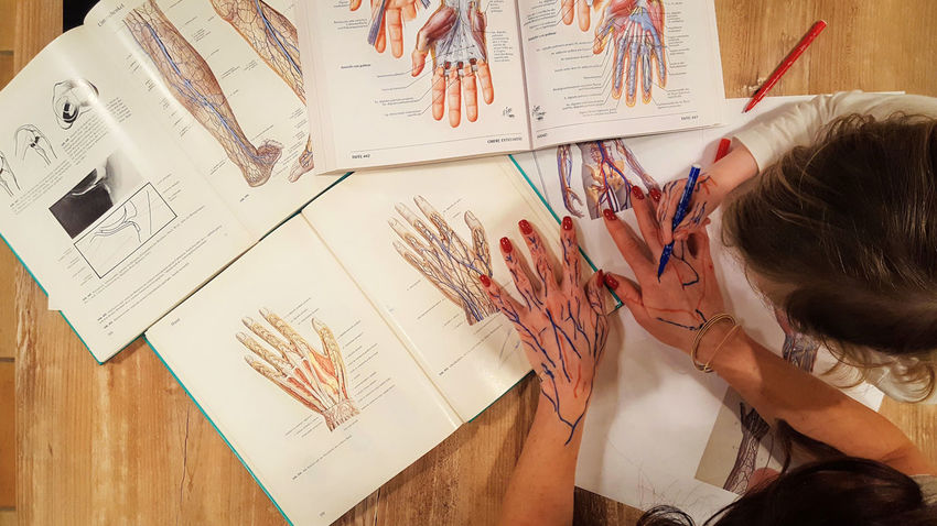 Women Adult Real People People Human Body Part Human Hands Drawing Creativity Child Medical Studying Student Student Life Learning Motherhood Books Hands Blood Vessels Business Woman Lines Anatomy Visual Creativity