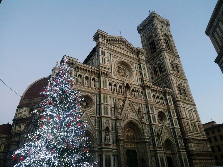 Low Angle View Tree Illuminated Christmas Time Firenze