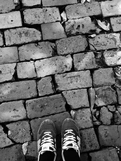 Walking Around Taking Photos OpenEdit ???&???
