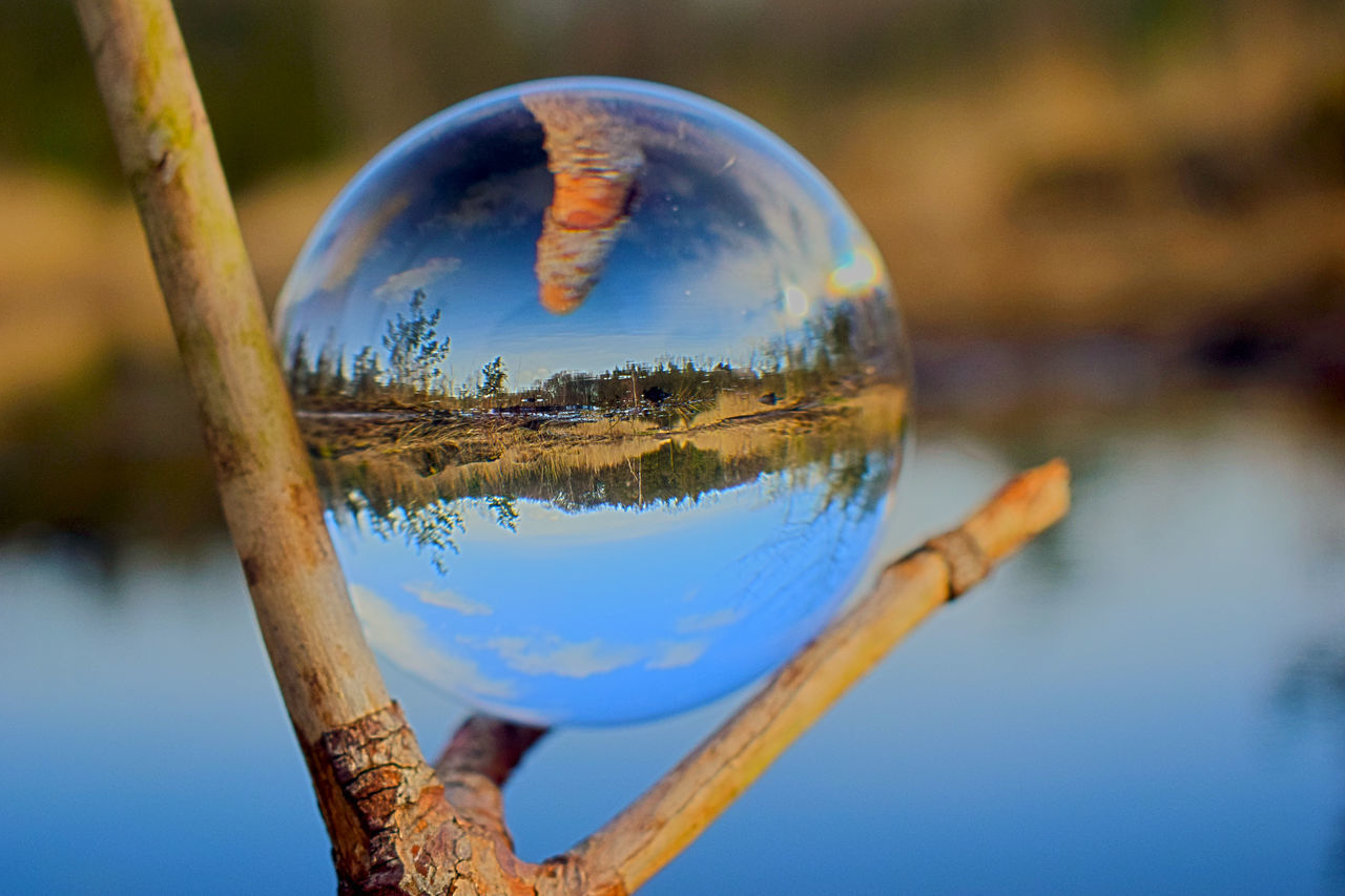 CLOSE-UP OF CRYSTAL BALL AGAINST TREES