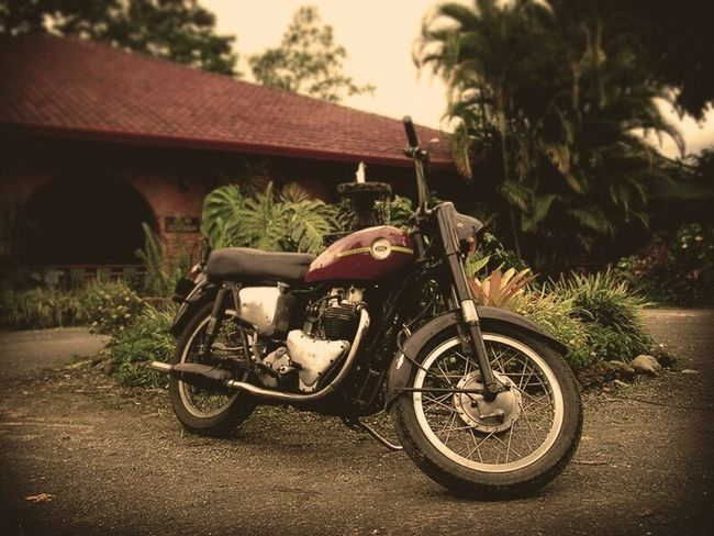 Ariel Huntmaster motorcycle 1956 Transportation Land Vehicle Mode Of Transport Outdoors Motor Vehicle Motorcycle Old Vintage Vintage Motorcycle Costa Rica