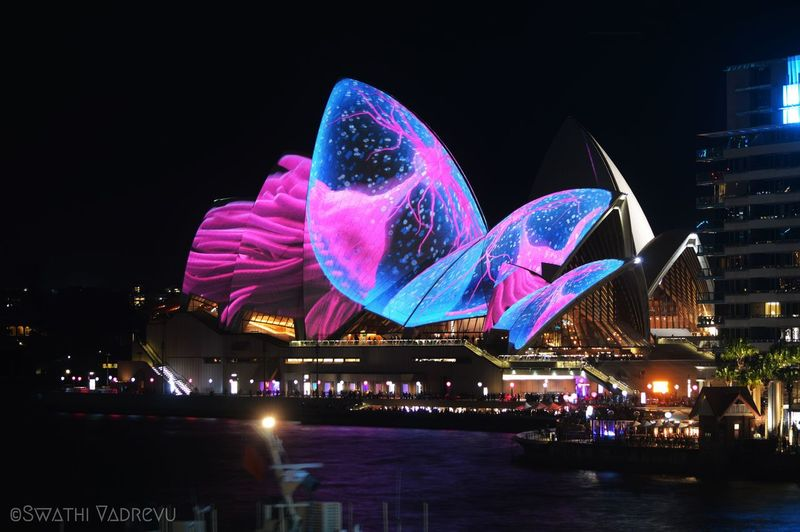 Australia Nature Opéra Architecture Arts Culture And Entertainment Beauty In Nature Built Structure Celebration City Cityscape Ferris Wheel Firework Display Illuminated Large Group Of People Lifestyles Night Outdoors People Performance Real People Sky Sydney The Entrance Travel Destinations Urban Skyline First Eyeem Photo