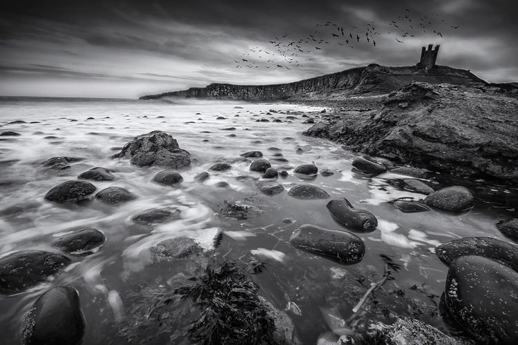 The Hill and its Birds Scenics Travel Destinations Tranquility Spooky Spooky Atmosphere The Magic Mission Northumberland Fine Art Photography Dunstanburgh Castle Sea And Sky Coastline Birds In Flight Physical Geography Sky And Clouds BW Landscape Wilderness Area Tranquil Scene No People EyeEm Nature Lover (null) Landscape Atmospheric Mood Castle Castle Ruin My Year My View