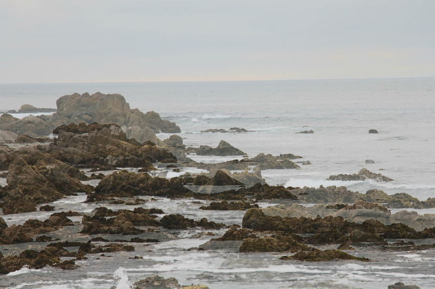 Beach Beauty In Nature Coastal Feature Day Horizon Over Water Landscape Monterey Nature No People Outdoors Rock - Object Scenics Sea Sky Vacations Water