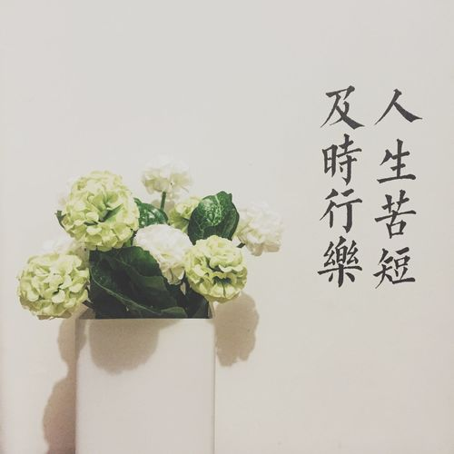 Flower Interior Design Interior Interior Views Interior Decorating Handwriting  Written On The Wall Chinese Chinese Culture Life Is Short So Just Live It To The Fullest.