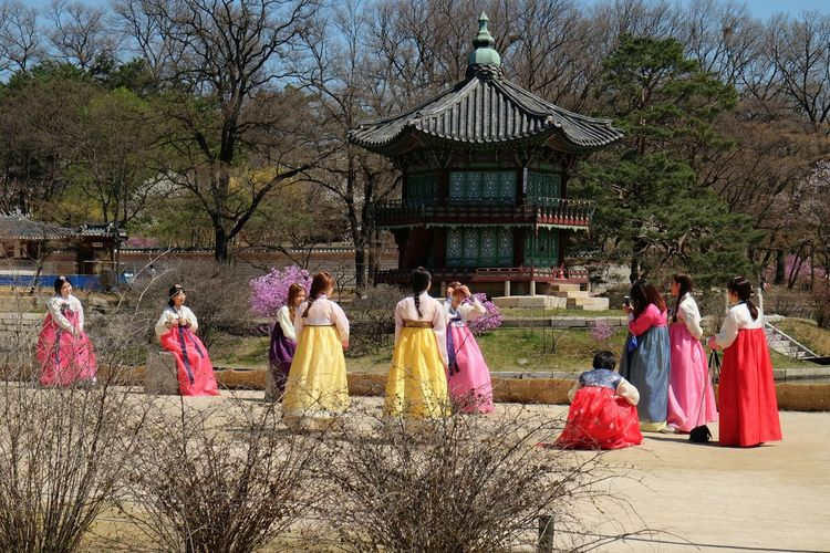 Women in traditional hanbok near Hyangwonjeong Pavilion, Gyeongbokgung Palace Cultures Day Enjoyment Gyeongbokgung Hanbok Hanbokgirl Hyangwonjeong Leisure Activity Lifestyles Mixed Age Range Nature Outdoors Palace Pavilion Pink Color Sky Southkorea Temple - Building Tourism Tourist Attraction  Tradition Travel Destinations Tree Vacations People And Places