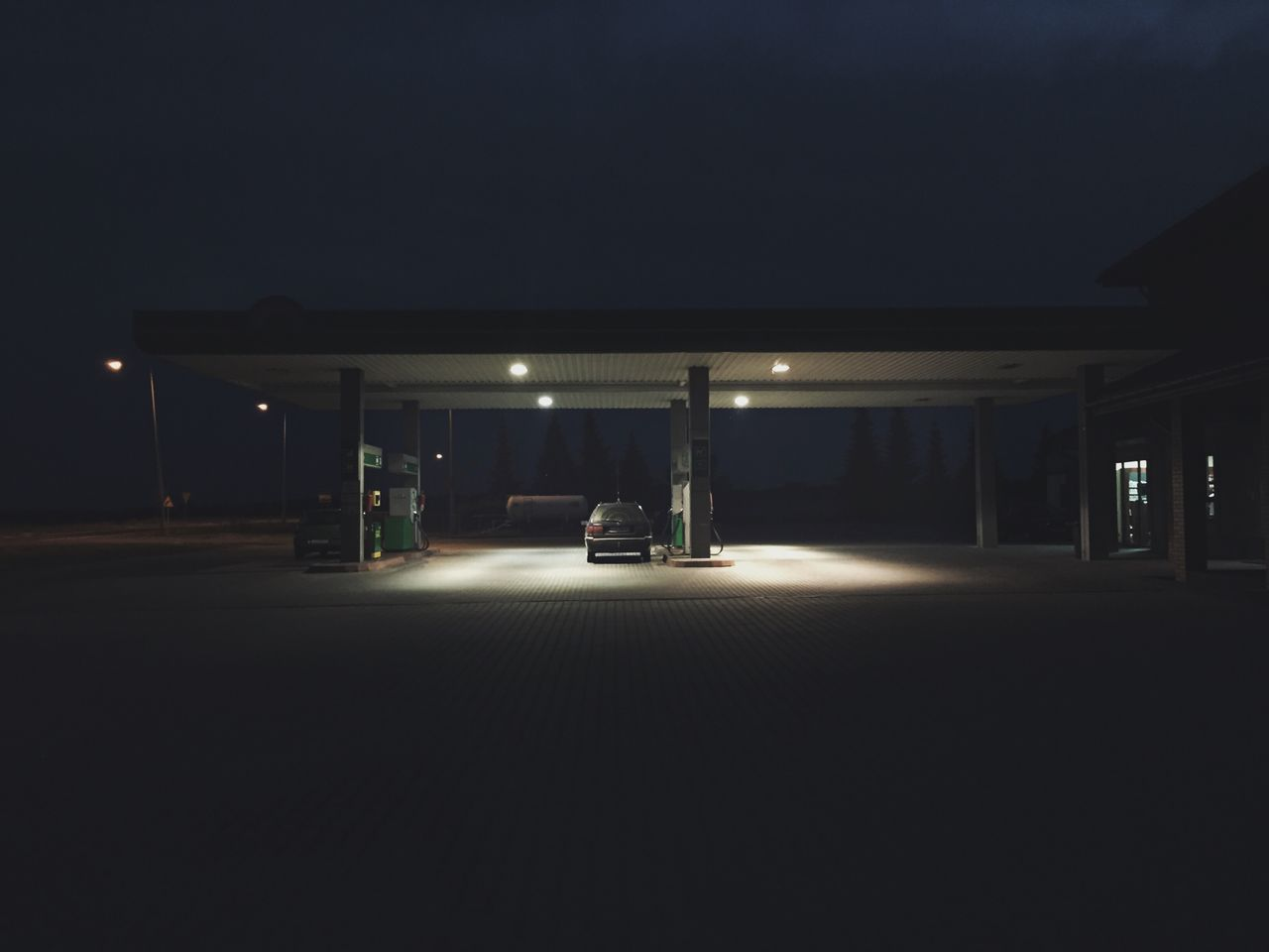Cat in illuminated gas station at night