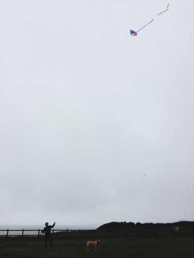 Christmas Day kite flying. Outdoors Leisure Activity Kite Cloudy