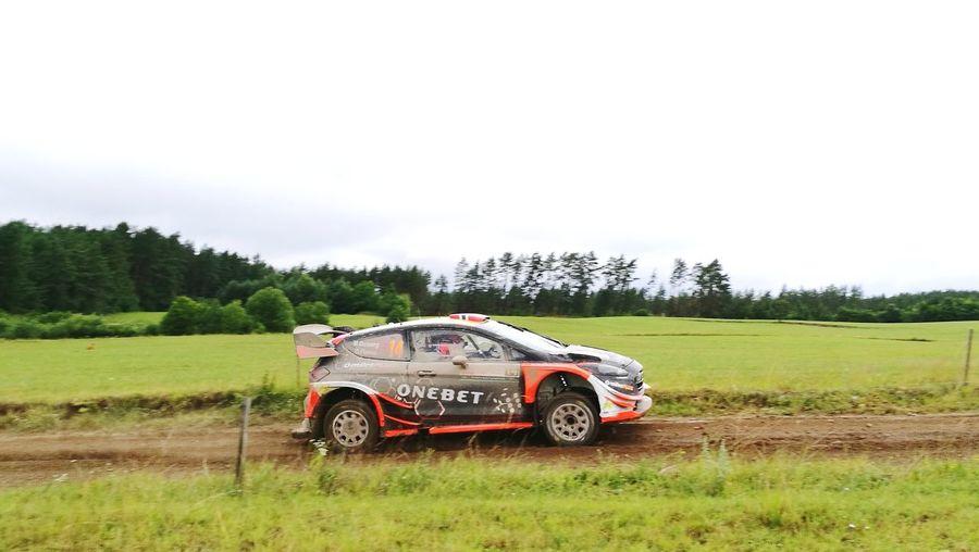Wrc 2017 Poland Rally M.Ostberg Ford Fiesta