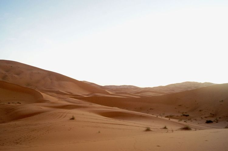 Clear Sky Desert Dunes Dunes Of Merzouga Extreme Terrain Landscape Nature No People Outdoors Sand Sand Dune Scenics Sky