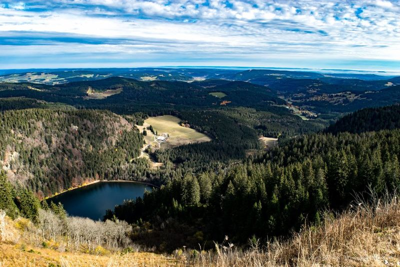 Landscape Nature Tree Aerial View Scenics Cloud - Sky High Angle View Mountain Black Forest