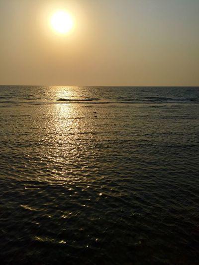 RedSea Sea