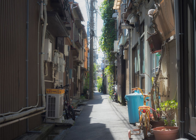 Backalley in Tokyo. Backalley Japan Japanese Culture Old Town Tokyo Alley Built Structure Day Direction Footpath House Long Narrow Nature No People Outdoors Plant Potted Plant Residential District Shitamachi Street Streetphotography The Way Forward Town Yanaka