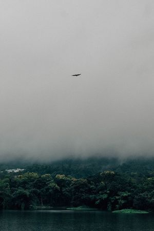 Foggy Weather Flying Sky Air Vehicle Airplane Mode Of Transportation Transportation Nature Water Scenics - Nature Cloud - Sky