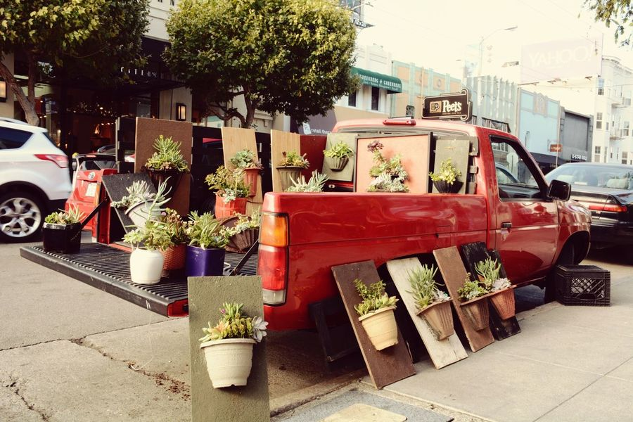 I saw that Red Truck when I was walking through San Francisco Downtown . He sold differnt kind of Plants right out of his Car Battle Of The Cities Professionalphotography Truck Summertime Embrace Urban Life America Crazy Moments Miles Away Hanging Out United States Eyeemgallery Up Close Street Photography Adapted To The City Travel Vacation Time Taking Photos Vacation , 2015  The Drive Finding New Frontiers Art Is Everywhere The Street Photographer - 2017 EyeEm Awards BYOPaper! Rethink Things Business Stories Colour Your Horizn Stories From The City California Dreamin Going Remote