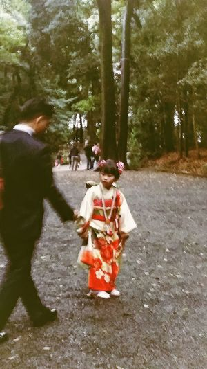 Little Girl Kimono Alldressedup Shinto Shrine Meiji Shrine Meiji-Jingu Forest She must be 7 ! Japanese Culture Tokyo Japan Travelphotography Streetphotography