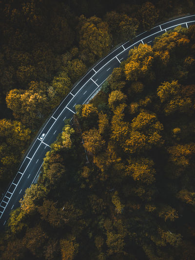 High angle view of bridge over road amidst trees