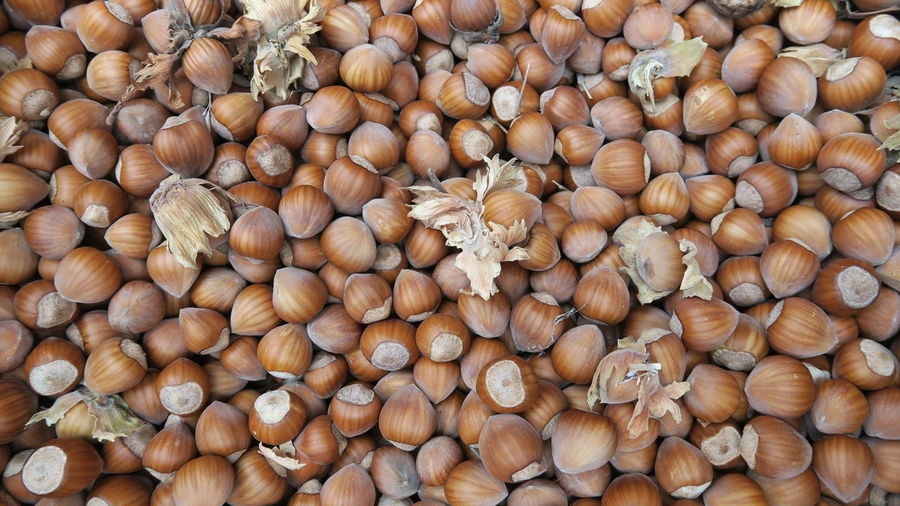 Full Frame Shot Of Hazelnuts
