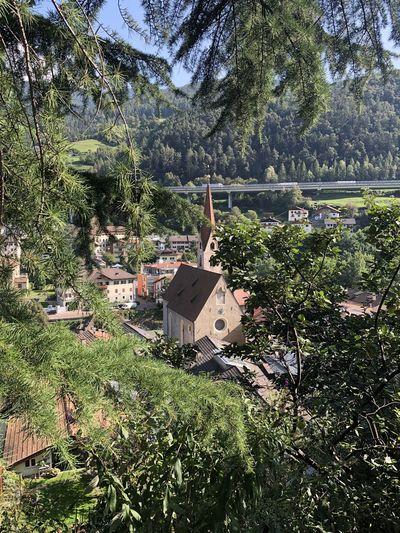 High angle view of trees and houses in forest