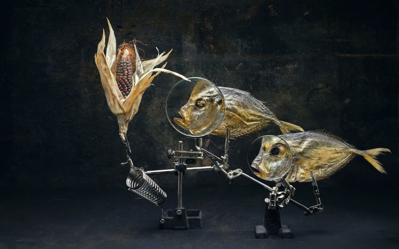 Dried fish and corn on stand