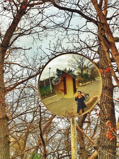 Reflection in a broken traffic mirror Tree Bare Tree Branch Cold Temperature Day Outdoors Nature Men Real People One Person Adult Sky People Female Girl Reflection Reflections Mirror Traffic Traffic Mirror Broken Bike