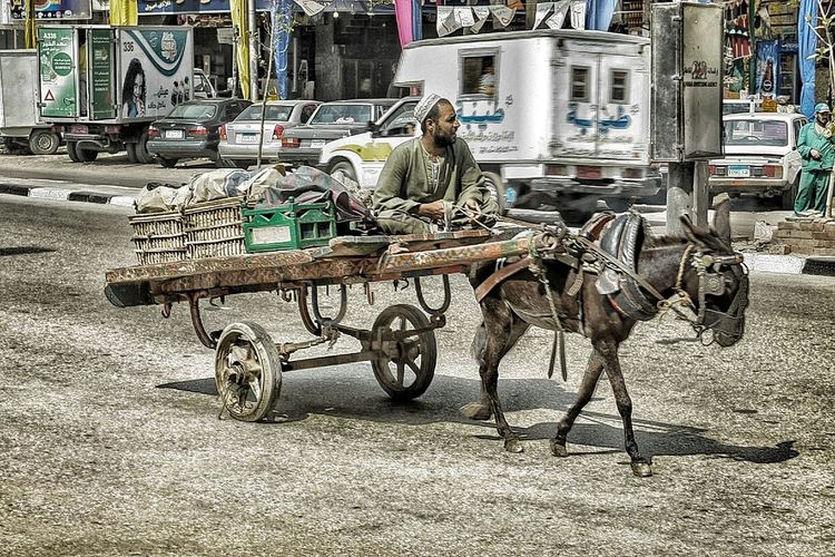 If you can't fly , run. If you can't run ,walk. By all means keep moving. The Street Photographer - 2014 EyeEm Awards Cart And Donkey Keepmoving