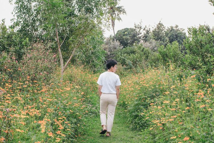 Rear view of woman walking amidst plants