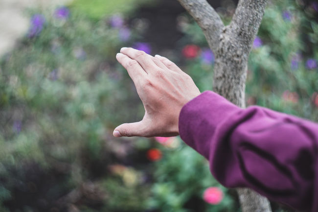 Human Body Part Children Only Human Hand One Person Child People Childhood Outdoors Day Purple Close-up Lifestyles Nature Flower Adult Be. Ready. EyeEmNewHere