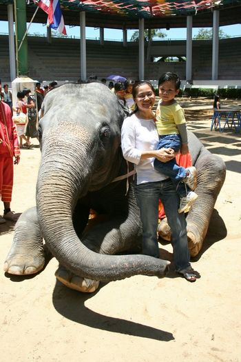 Amusement Park Full Length Sand Family With One Child Childhood Son Mother Thai Kid Cute Love Animal Themes Elephant OutdoorsSmiling Happiness Togetherness