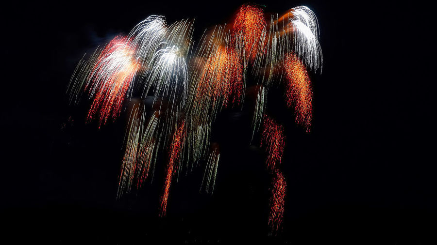 Arts Culture And Entertainment Black Background Close-up Copy Space Dark Exploding Firework Hair Illuminated Indoors  Long Exposure Make-up Motion Multi Colored Nature Night No People Still Life Studio Shot