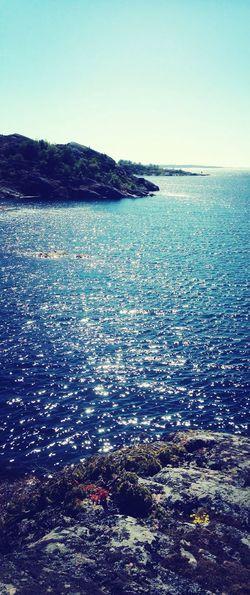 Swedish Summer Summer Ocean Nature Landscape