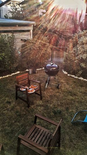 Outdoors Day BBQ Time Grillen & Chillen Grillen Mit Freunden Summertime Summer Evening Webergrill Outside Dining