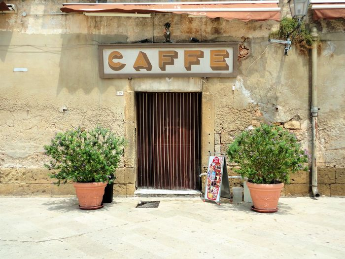 Architecture Brick Wall Built Structure Caffè Closed Coffee Day Entrance Italian Bar Italian Caffe No People Old Buildings Old Cafe Old Shop Outdoors Outside Potted Plant Puglia South Italy Vintage Wall