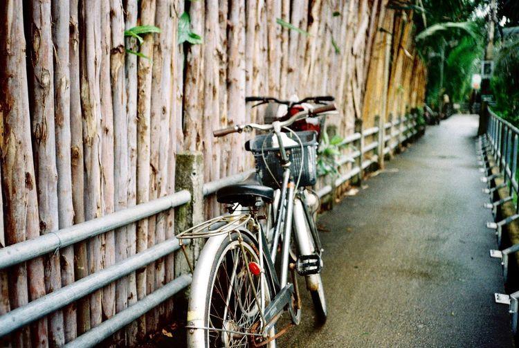 The Bike. 35mm