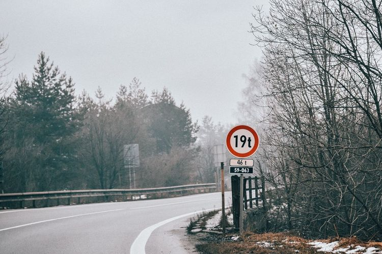 Road sign by trees during winter
