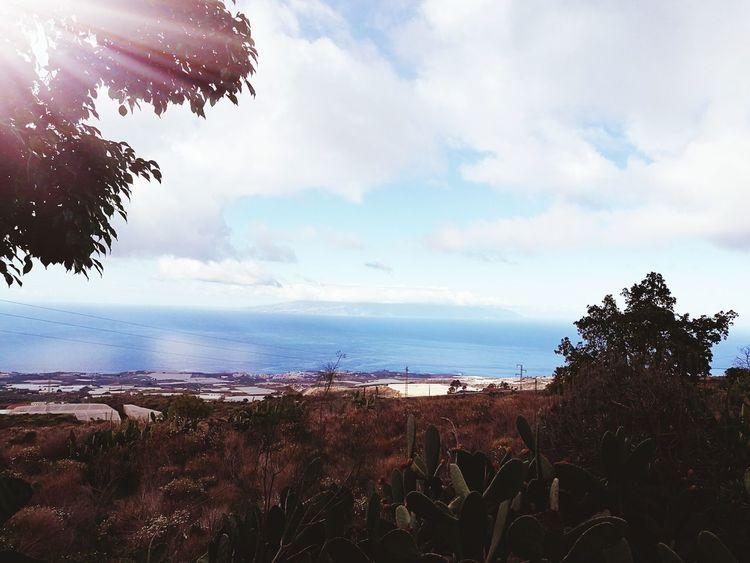La Gomera Mañana Beauty In Nature Nature Beach Good Day Beauty In Nature Naturaleza🌾🌿 Beatiful HuaweiP9 HuaweiP9Photography Nuvesdealgodon Lovelyparadaise Photo♡ Naturephotography Tenerife Island Gold Colored Guia De Isora Water Day
