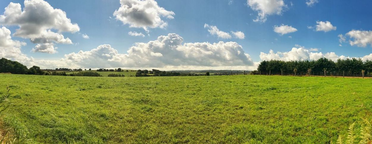 Brittany Panorama Beauty In Nature Cloud - Sky Day Field Grass Green Color Growth Landscape Maël-carhaix Nature No People Outdoors Rural Scene Scenics Sky Tranquil Scene Tranquility Tree