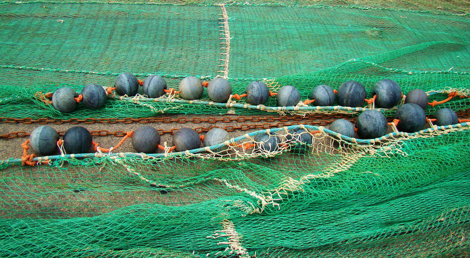 Fishing Net Day Fishing Fishing Net Green Color High Angle View Land No People Outdoors