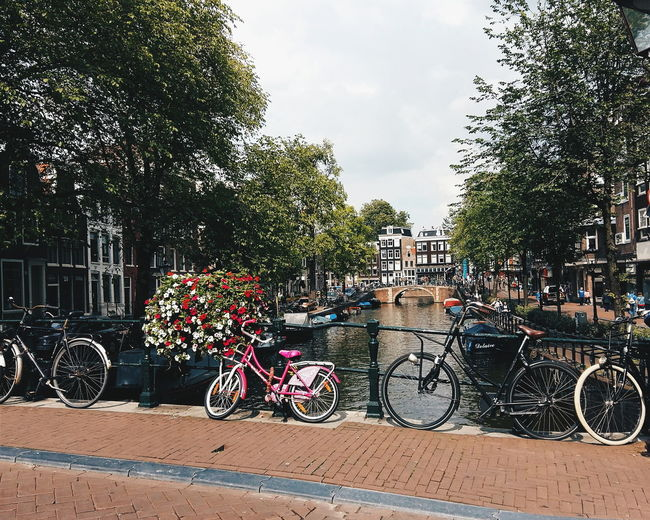 Amsterdam Architecture Bicycle Canal City City Life Cycle Europe Parked VSCO Vscocam