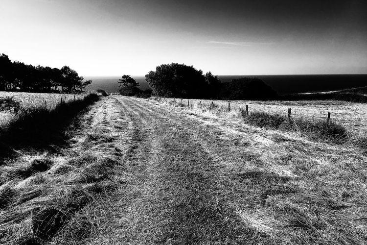 Chemin Tranquil