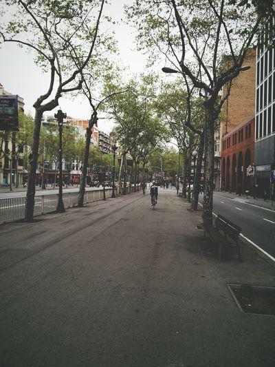 Barcelona SPAIN Granviabarcelona Picoftheday Photooftheday Photography Eye4photography  Taking Photos Taking Pictures Travel Photography Streetphotography Traveling Plaza De España Cycling