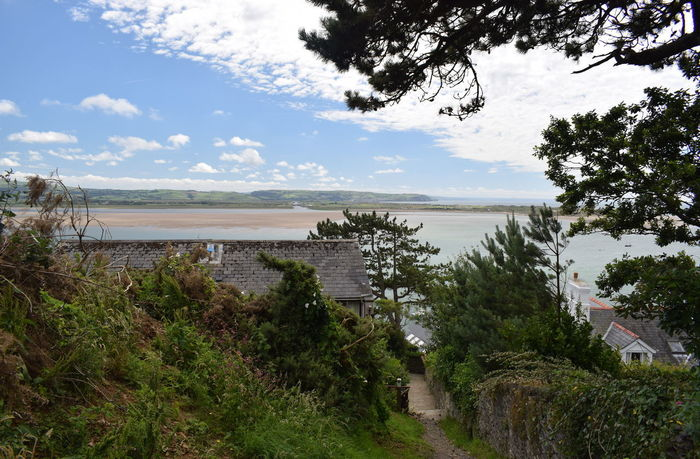 Looking towards Borth from Aberdovey Water Sky Plant Tree Cloud - Sky Tranquility Nature Tranquil Scene Beauty In Nature Scenics - Nature Day Growth No People Reflection Outdoors Non-urban Scene Landscape Wales UK Aberdovey Estuary Ceredigion Cardigan Bay Borth River Mouth Sand