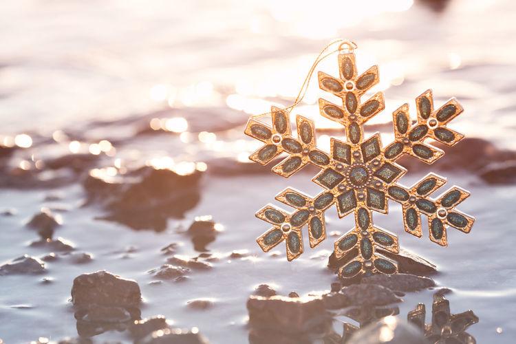 Close-up of snowflake in lake