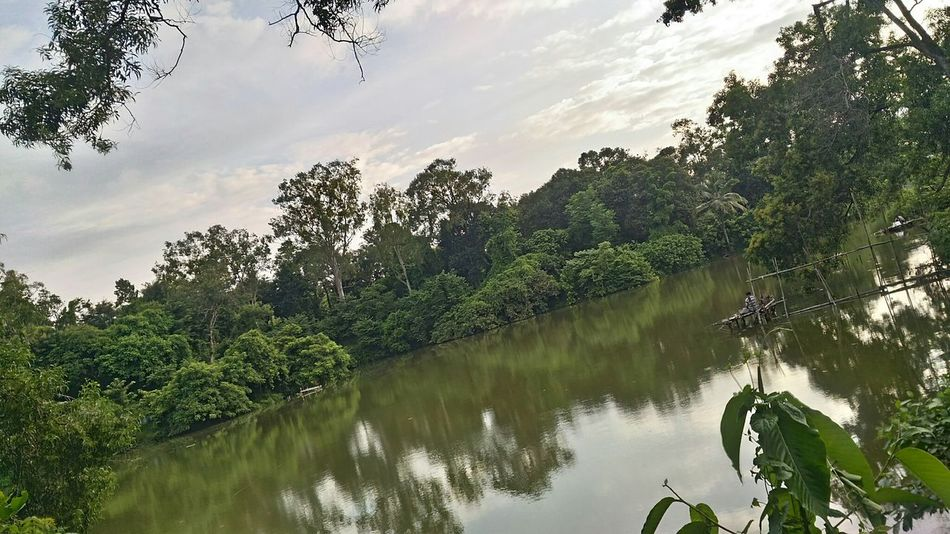 Lake Nature Outdoors Beauty In Nature Tripura Agartala Northeastindia Northeast India Monsoon Fishing Fishermen MBB College Campus
