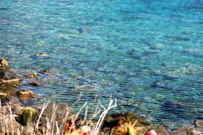 Acqua Acqua Limpida Beauty In Nature Blue Blue Wave Capo Milazzo Fondale Marino High Angle View Italy Mare Milazzo Nature No People Onde Del Mare Outdoors Sea Sicily Spiaggia Del Tono Vegetazione Water