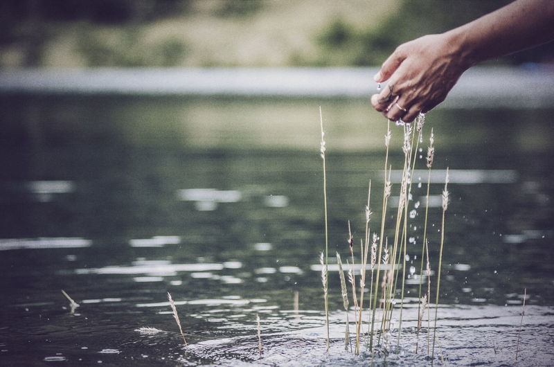 Cropped hand of woman splashing water in lake