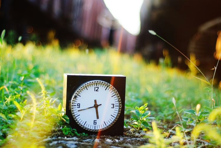 Grass Clock Time INTIME Green Backgrounds Background Black Outdoors Outdoor Photography Clock Face Minute Hand Hour Hand Clock Time Roman Numeral Meadow The Natural World Alarm Clock Grass Wall Clock Instrument Of Time Circular Clockworks Time Zone Mounted Hourglass Astronomical Clock Timer Number 12