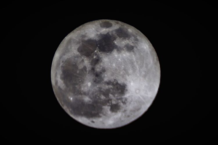 Full Moon Nightphotography Night Blurry Amateurphotography Canon T Ring Celestron May Telescope