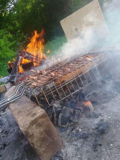 Шашлык шашлык на природе БАРБЕКЮ шашлык машлык чечня чеченская республика природа🍃